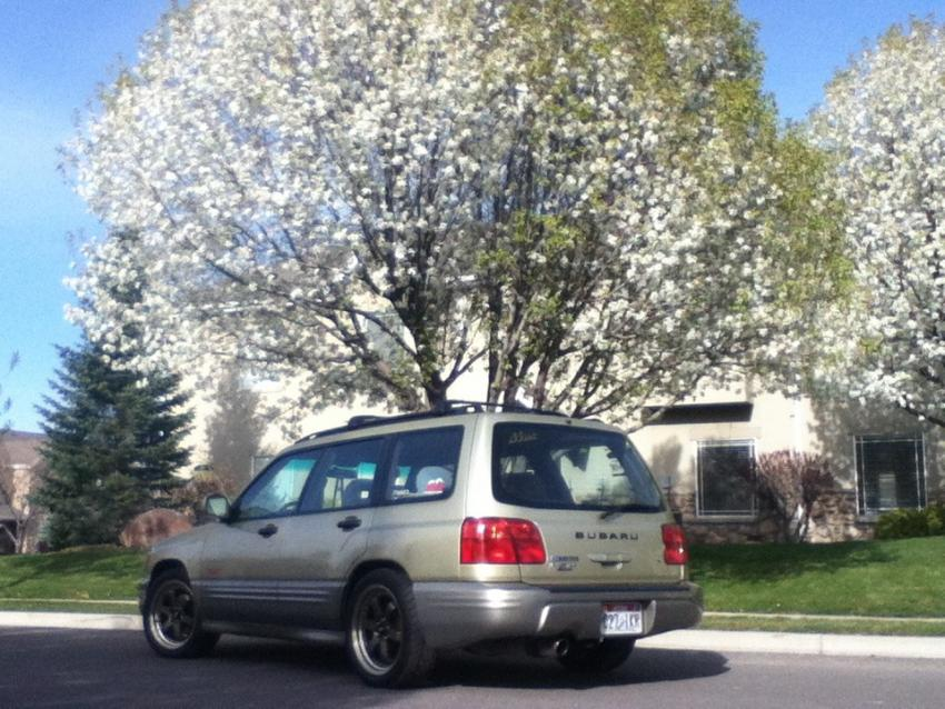 Tasteful wheel Foresters-imageuploadedbyag-free1368489896.732751.jpg