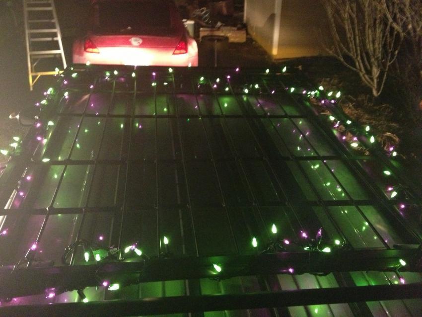 """FOTM December 2012 - """"Holiday Cheer!""""-img_0196.jpg"""
