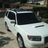 Wht08forester