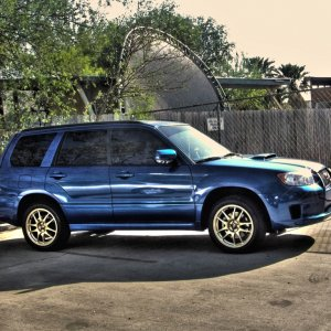 Forester HDR Shot
