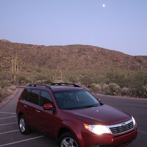 Red Paprika Pearl at Saguaro National Park, Part 4