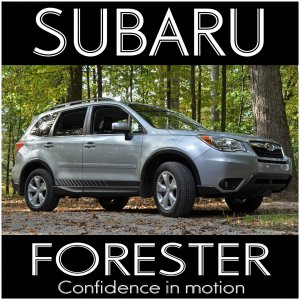 My Forester Poster